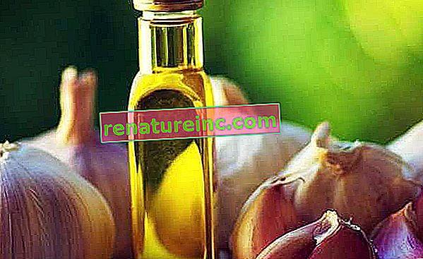 Knoblauchöl: wofür es ist und welche Vorteile es hat