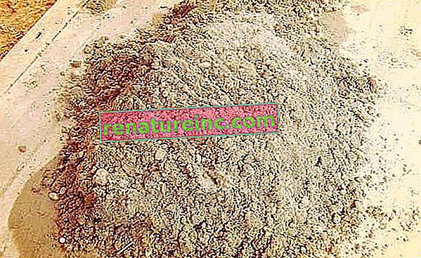 Comment faire de la farine d'os pour les plantes
