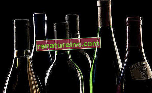 Od sajenja grozdja do skladiščenja: izvedeti vse o postopku pridelave vina