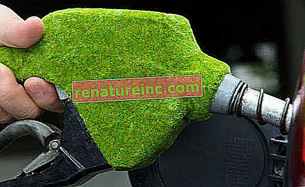 Wat is biobrandstof?