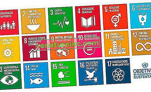 UN SDG: 17 Ziele für nachhaltige Entwicklung