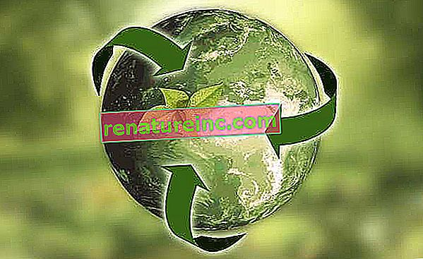 Какво е устойчивост: концепции, определения и примери