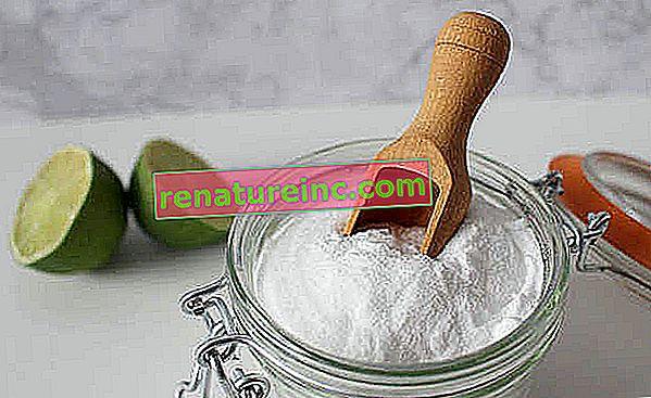 Печене и лимон: мощно домашно дуо