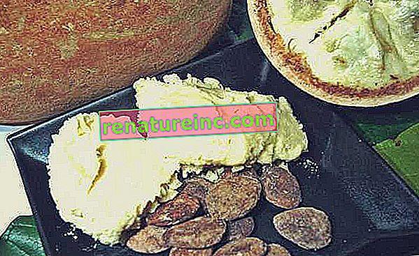 ¿Qué es la mantequilla de cupuaçu y sus beneficios?