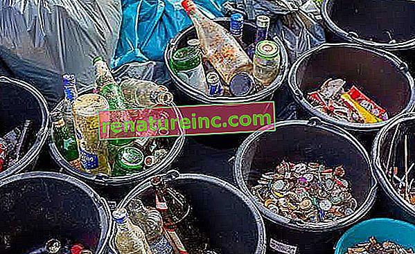 Рециклируеми и нерециклируеми отпадъци: знайте кой е кой
