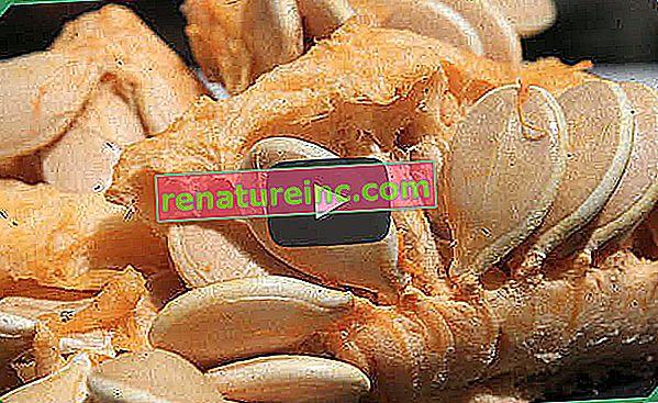 Siete beneficios para la salud de la semilla de calabaza