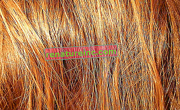 Descubre la lista de sulfatos prohibidos para quienes quieren tratar su cabello con las técnicas No Poo y Low Poo