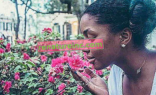 Aromaterapi er en naturlig behandling af bihulebetændelse. Forstå