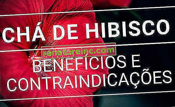 Čaj iz hibiskusa: čemu služi