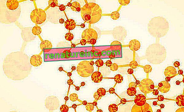 Que sont les perturbateurs endocriniens et comment les éviter
