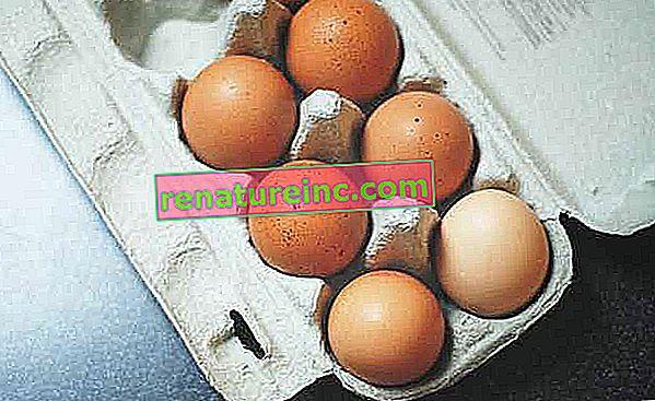 Fritgående, organiske og fritgående æg: forstå forskelle