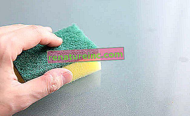 Гъбата за миене на съдове натрупва бактерии и гъбички. Разберете