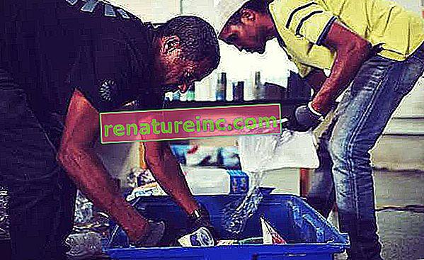 Pontos de coleta seletiva: veja onde levar seus resíduos
