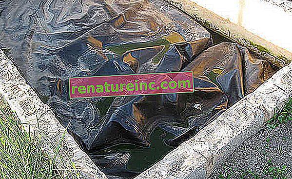 Biofordøjelse: genanvendelse af organisk affald